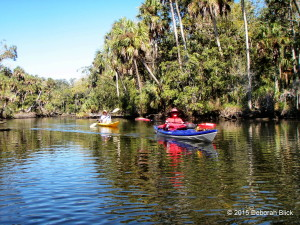 Chassahowitzka River, The Chaz, Chaz