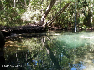 Chassahowitzka River, The Chaz, Chaz, Baird Creek, The Crack