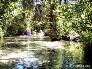 Juniper Creek, Juniper Springs, Juniper Run