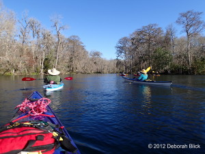 Silver River, Silver Springs, kayaking, Silver Springs State Park