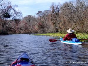 Ocklawaha River, Ocklawaha, kayaking