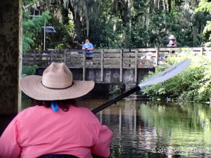 Prairie Creek, Gainesville-Hawthorne Trail, Gainesville-Hawthorne bridge, kayaking