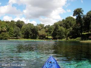 Rainbow River, Rainbow Springs