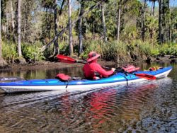Rocinante on the Chassahowitzka River