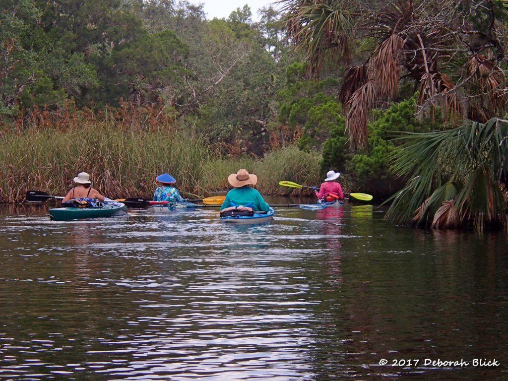 Paddling down Baird Creek