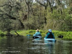 Floating down the Ichetucknee River. With a 3 mph current and a short distance, we usually just coast and admire the scenery.