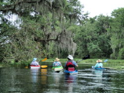 Coasting down the Ich under the Spanish Moss