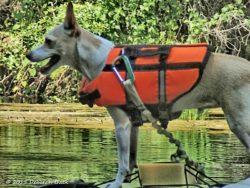 Jesse James on his kayak.