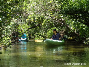 Juniper Creek, Juniper Run, Juniper Springs Recreation Area