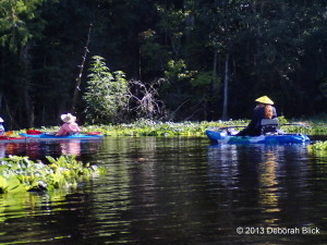Ocklawaha River, kayaking