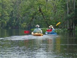 Paddling down the Ocklawaha