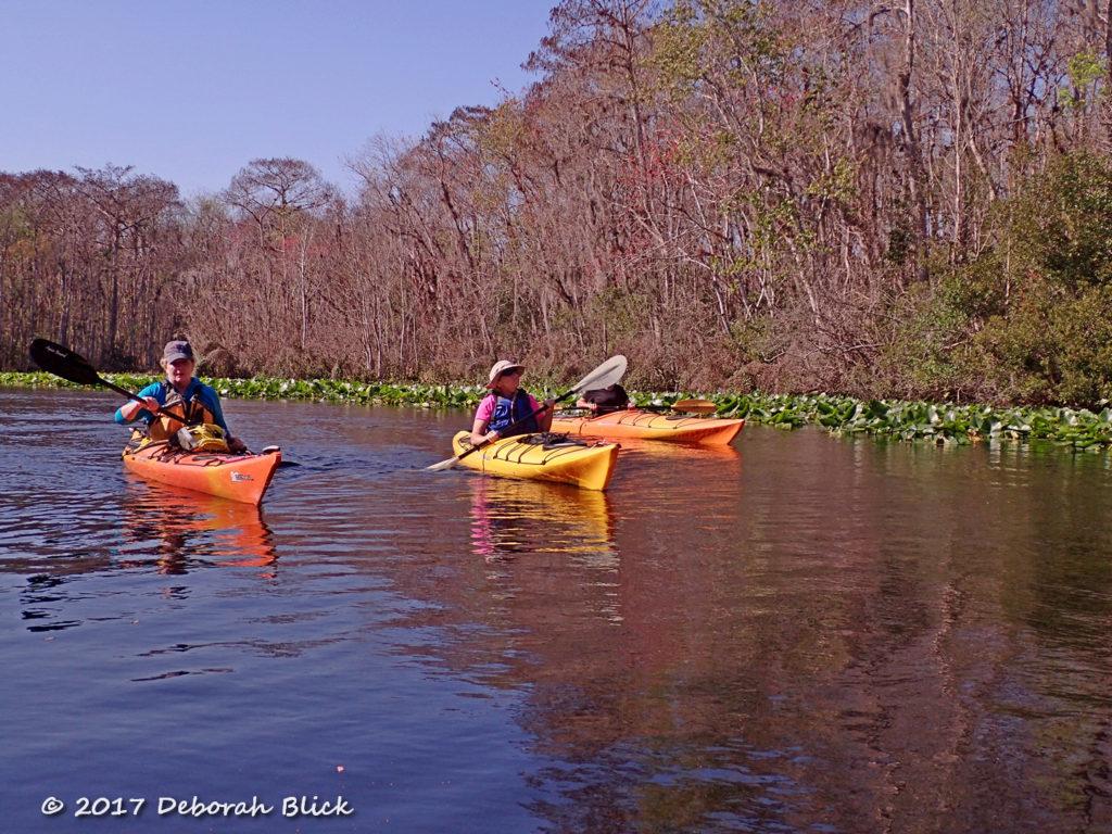 Coasting down the Ocklawaha River