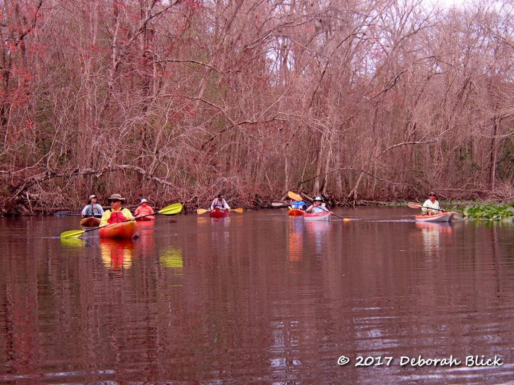 """The Gang"" on the lower Ocklawaha"