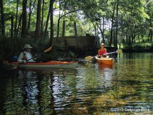 Lily Springs, Santa Fe River, kayaking