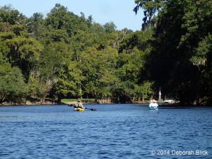 Santa Fe River, kayaking