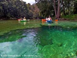 Kayaks over Rum Island Spring.