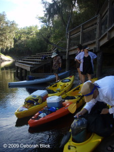 Suwannee River, River Camp, kayaking