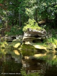Fascinating limestone formation created by the Suwannee waters.
