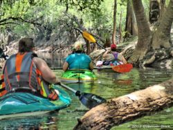 Paddling down a feeder stream back to the Suwannee