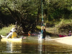 At Telford Spring we just had to try out the rope swing