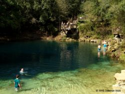 Royal Springs - a perfect place to swim or wade on a warm afternoon.