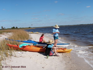 Suwannee River, Gulf of Mexico, Cat Island, kayaking