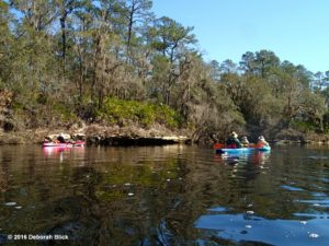 Rock ledges along the upper Suwannee.