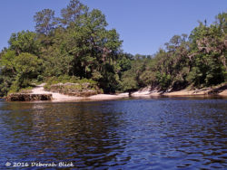 Junction of Alapaha and Suwannee rivers. Beautiful white beaches for camping and breaks.