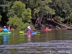 Colorful kayaks on the Suwannee.