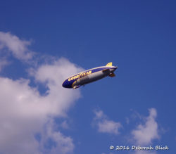 The Goodyear blimp at Manatee Springs.