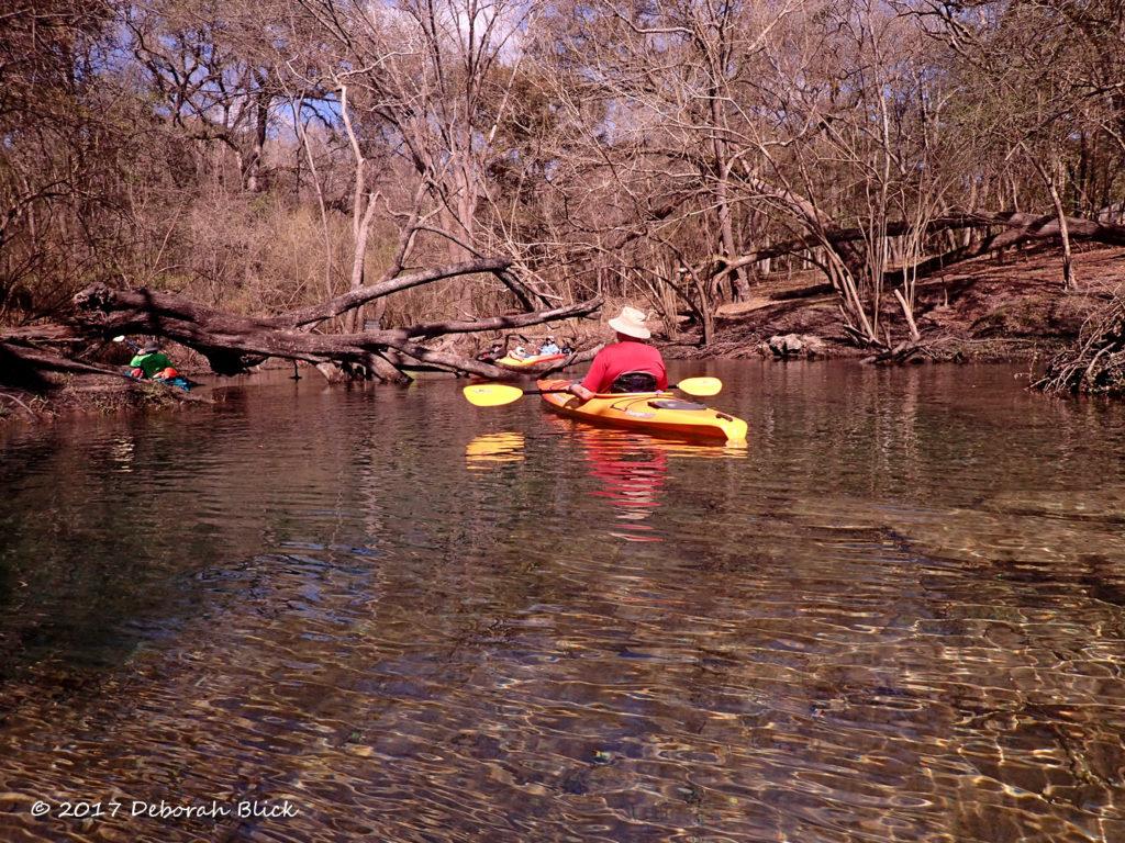 Paddling up Suwannee Blue Springs run