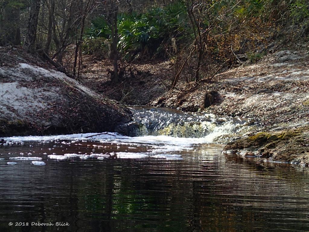 Roaring Creek meets the Suwannee RIver