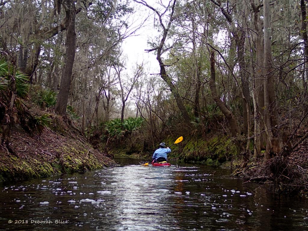 Paddling up Little Creek