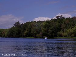 In the afternoon we had beautiful blue skies and sunshine on the WIthlacoochee.